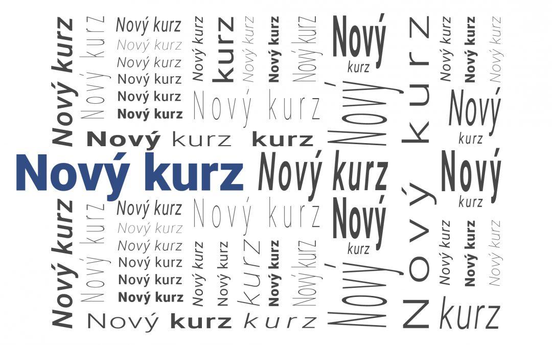 Česky bez chyb – stručný přehled českého pravopisu